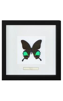 """Cadre décoratif au décor de papillon """"Karna"""""""