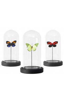 Ensemble décoratif de 3 globes en verre avec papillons