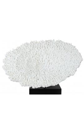 Grand corail hérisson monté sur socle en bois