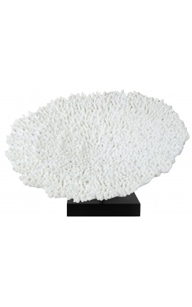 """Grand Reef """"hedgehog"""" mounted on a wooden base"""