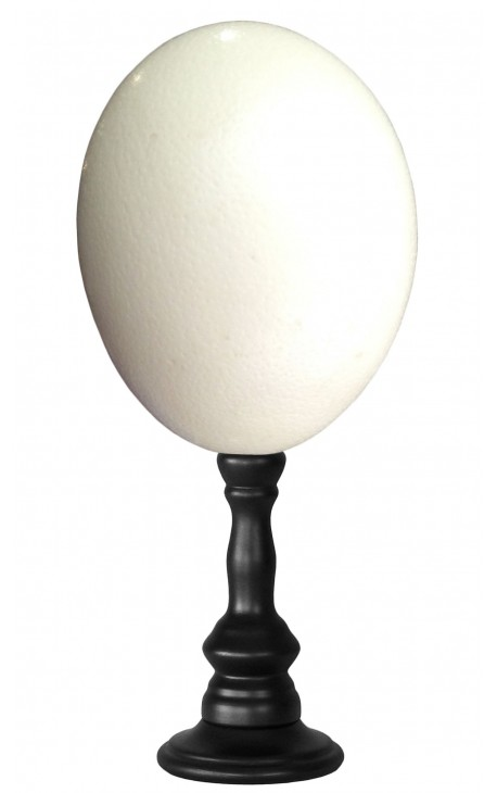 Ostrich egg on wooden baluster