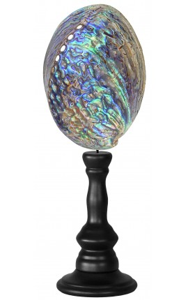 Abalone Paua on wooden baluster
