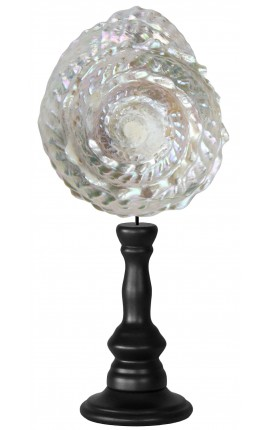 Trocha Astrea Undosa on wooden baluster