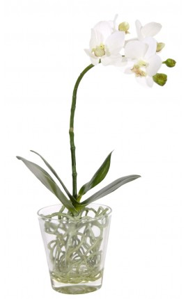 Orchidée blanche Phalaenopsis en tissu