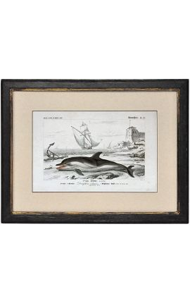 Patinated black frame with gilded polychrome engraving gouache: dolphin.