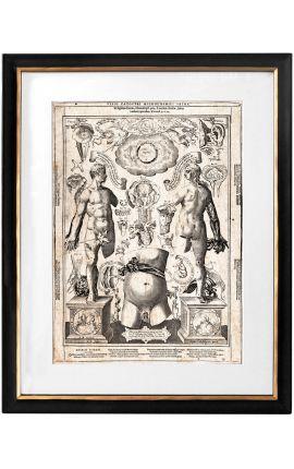 "Grande gravure antique du corps humain ""visio captori microcosmi prima"""