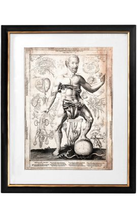 "Large antique engraving of the human body ""visio captori microcosmi prima"""