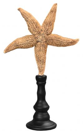 Grand starfish yellow on wooden baluster