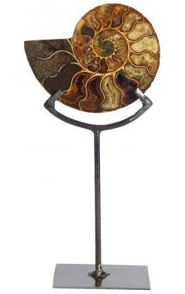 Nautile (ammonite) fossilisé sur socle en métal