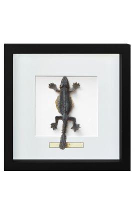 "Decorative frame with a Lizard ""Lisard Sp."""