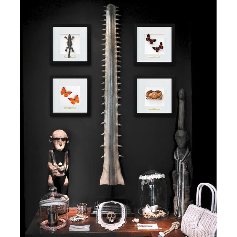 cadre d coratif avec l zard lizard sp. Black Bedroom Furniture Sets. Home Design Ideas