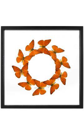 "Decorative frame with butterflies round ""Appias Nero Galba"""