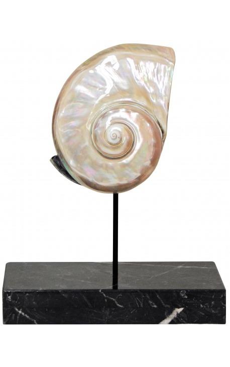 Turbo Marmoratus geant sur support en marbre noir