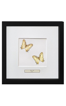 "Decorative frame with two butterflies ""Cyrestis Camillus"""