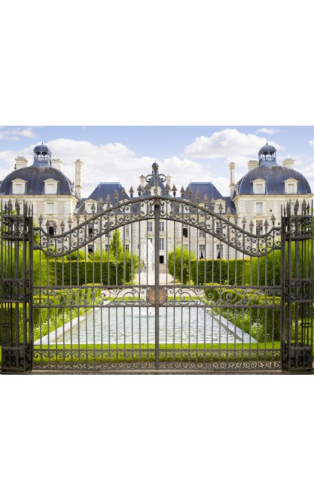 Gate For Castle Baroque Wrought Iron Gates With 2 Doors And 2 Columns