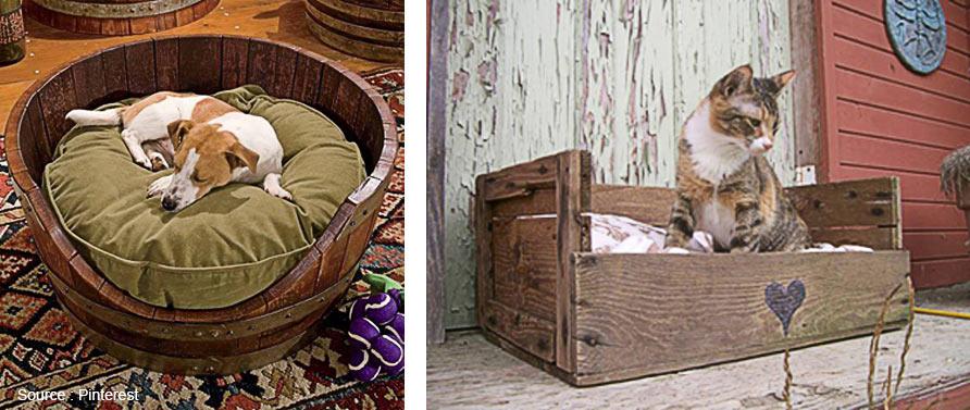 quand la d co s int resse nos animaux. Black Bedroom Furniture Sets. Home Design Ideas