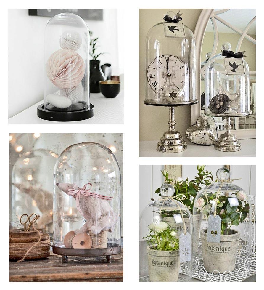 Que Mettre Sous Une Cloche En Verre focus on the glass bells